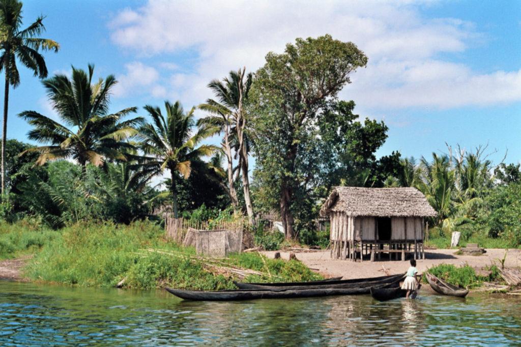 Im Regenwald von Madagaskar